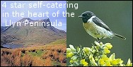 4 star self-catering in the Llyn Peninsula